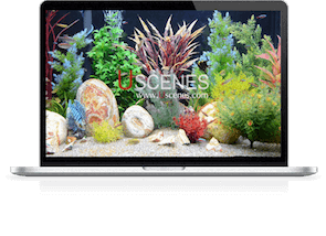 hd aquarium for laptops and pcs