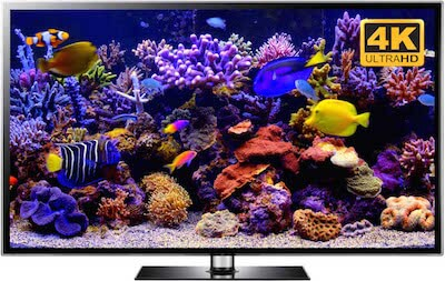 4K aquarium video and aquarium screensaver downloads