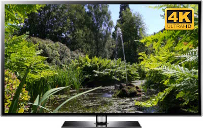 4K TV Garden Screensaver