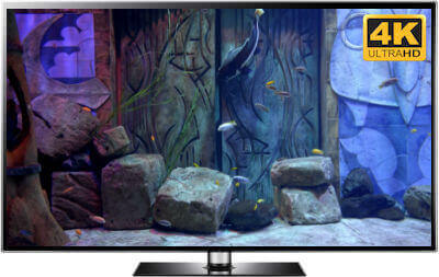 download relaxing aquarium screensaver in 4K The Secret Doors