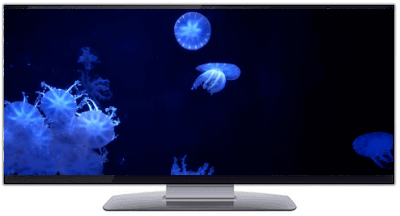 Ultrawide JELLYFISH SCREENSAVER ULTRA-WIDE VIDEO 1440P
